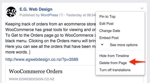E_G__Web_Design_Facebook